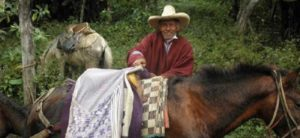 ペルー サンペドロ村 フレディテオフィロ