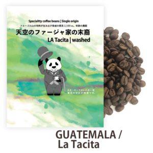 天空のファージャ家の末裔 グアテマラ ラタシータ農園 スペシャルティコーヒー