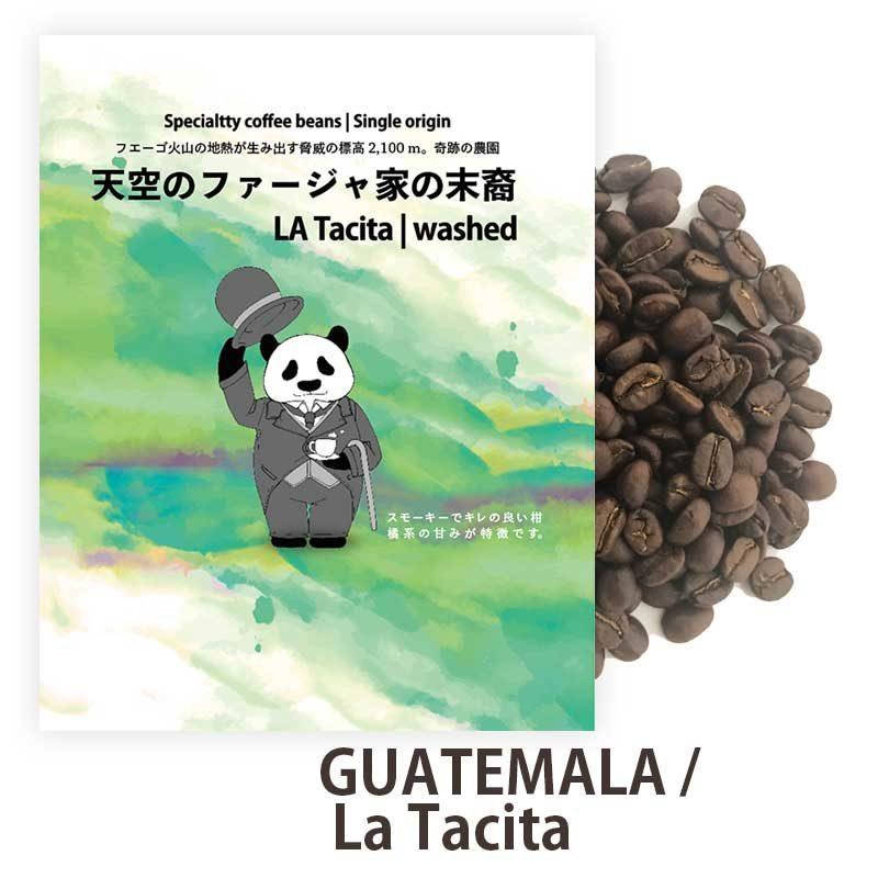 グアテマラ ラタシータ農園 スペシャルティコーヒー