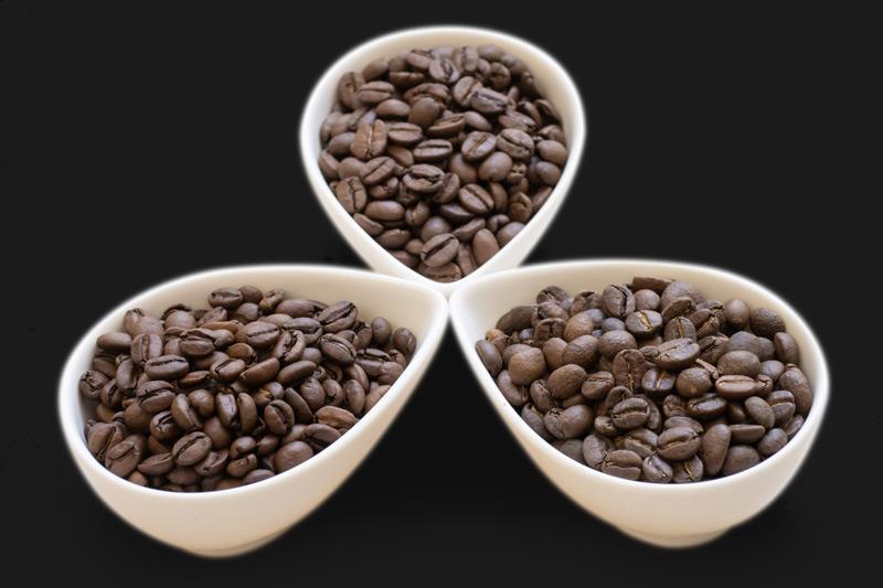 ゲイシャが希少な豆と呼ばれる3つの理由